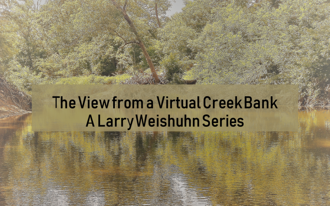 View from A Virtual Creek, Post Thirty-five