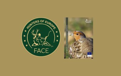 Hunters Lead 430 Conservation Project in Europe, FACE Reports
