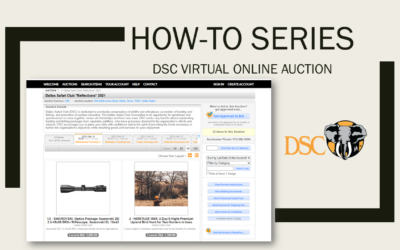HOW-TO: DSC ONLINE AUCTIONS