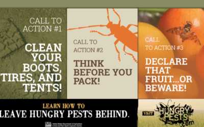 Department of Agriculture Declares April Invasive Plant Pest and Disease Awareness Month