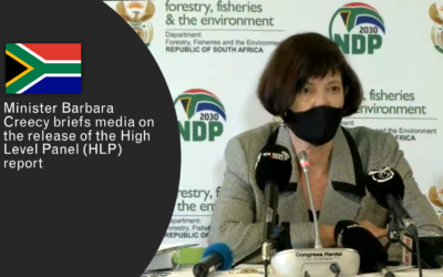 South African Panel Releases Report on Elephant, Lion, Leopard and Rhinoceros Management