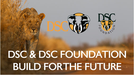 DSC and DSC Foundation Build for the Future